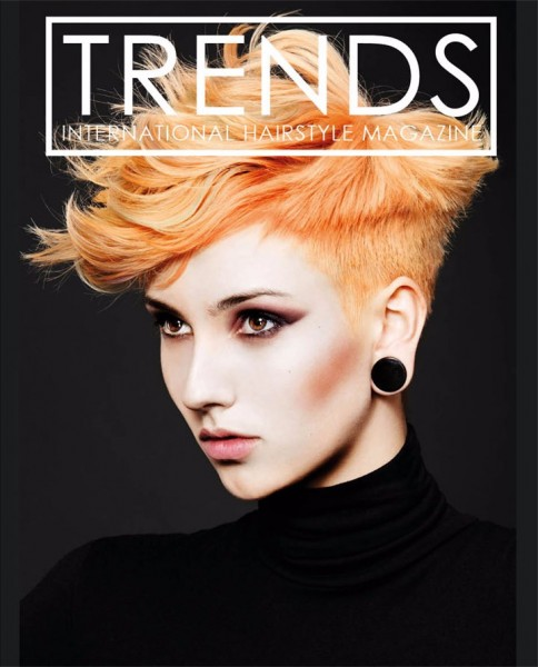 Frisurenbuch Trends