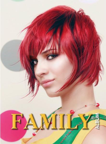 Frisurenbuch Family Volume 28